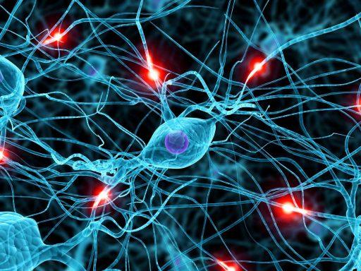 movimento-verticale-e-neuroni